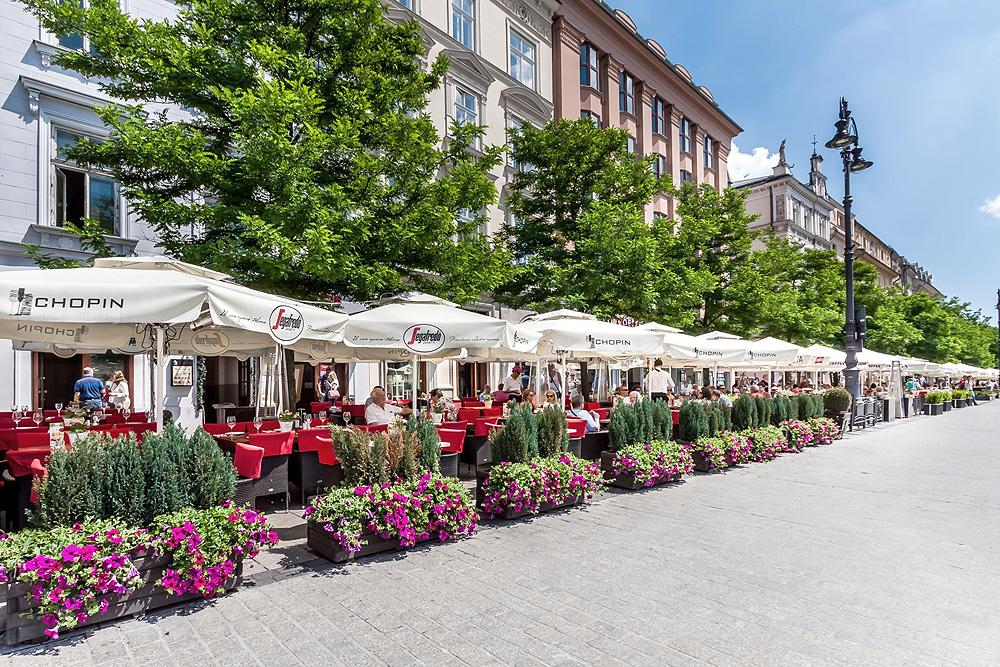 Кафе на Рыночной площади в Кракове