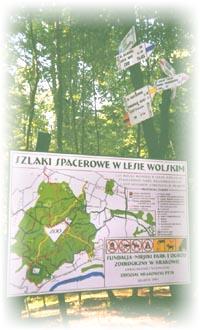 Указатели в Вольском лесу